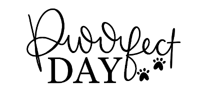 daisy b stamps - purrfect day